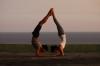 Шивананда йога за начинаещи