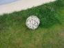 Декоративна дървена топка DT003
