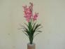 Розова Орхидея 60см