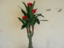 Амарилис с червен цвят 150см