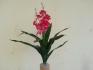 Орхидея 80см