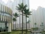Кoкoсова палма с изкуствено стъбло.