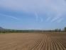 ВРАЦА,ПЛЕВЕН,ВЕЛИКО ТЪРНОВО,РУСЕ,СИЛИСТРА,РАЗГРАД-Купува земеделска земя!!!!!!!!!!!