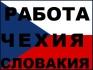 Словашка фирма 0876942122 набира работници мъже и жени, работите без посредници, не давате КОМИСИОНИ, нито тук нито там, договор, седмичен аванс,...
