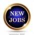 Нови работни места Чехия , 2018 г . - 1500 евро заплата