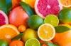 "Разсад набор ""Цитрусови"": лимон, портокали, грейпфрут и мандарина"