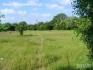 Продава се евтина земя за строителство в село Паламарца