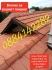 Ремонт на покриви от А до Я-0884142282