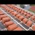 Ремонт на покриви 0884605352