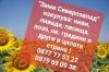 Купуваме: ниви, ливади,пасища,ов. градини и др.!