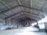 Давам под наем хале - 1000 кв/м светло-южно остъкление, и прилежащи стаи - 500 кв/м. конструкция - бетоно-панел, тухла, изолация на покрива +...