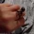 Искрящ пръстен-змия