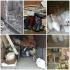 Почистване на Мазета Гаражи Дворове Тавани